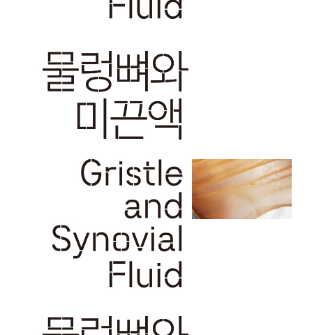 Gristle and Synovial Fluid
